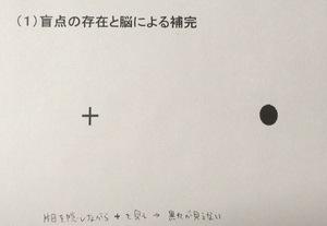 2017.6.15その3.jpg